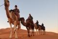 camel-trekking-4