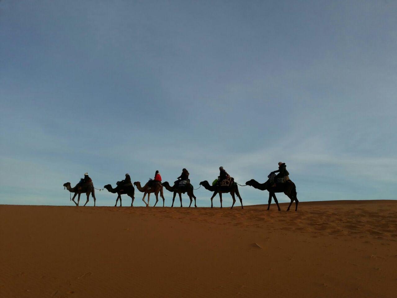 Morocco Visitors